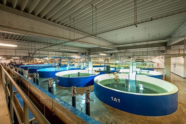 AquaMaof R&D Facility, Poland